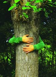 Hug a tree this Halloween (image: community.pearljam.com)